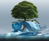 eco-wiki